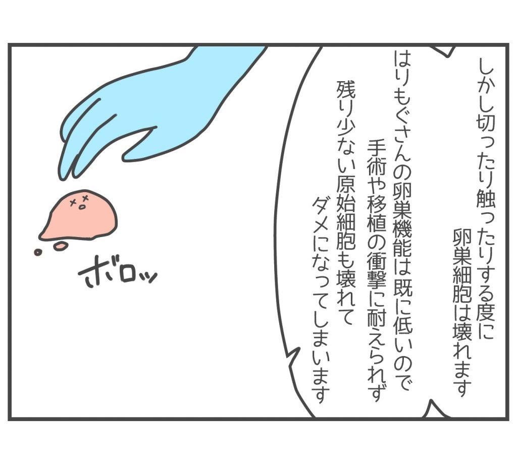 卵巣凍結とは5